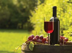 Shady Creek Winery Expands Footprint