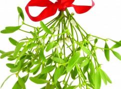 Mistletoe and Marketing