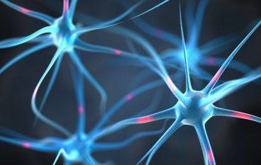 Construction Begins on $120M Neuro-Diagnostic Institute