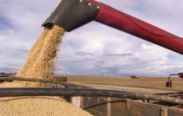 Grain Transport Company Announces $31M Expansion at Port