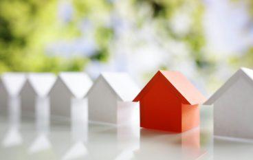 Conexus Exec. Joins Holliday Properties