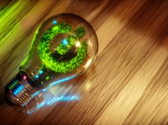 Green for Green – Big Investments to Enhance Sustainability