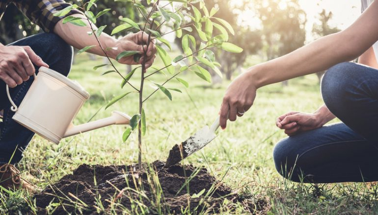 15 Environmental Projects Receive Funding