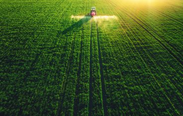 Peas and FAQs – Indiana Agriculture is Big Business