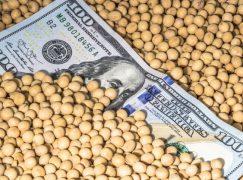 Indiana Makes $2B Crop Deal