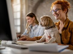 Four-Legged Benefits – Employers are Getting Pet Friendly